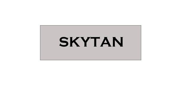 Skytan Services